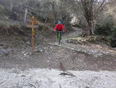 ενοικίαση ποδηλάτων Λέσβος